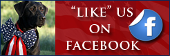 """LIKE"" Stars & Stripes Patriotic Jewelry on Facebook!"